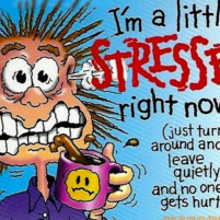 Stress and anxiety can be due to traumas of the past or present, too much work, too little sleep, too much caffeine, yuck food, hormonal changes, too little movement and other mind/brain/emotional/social/physical causes.